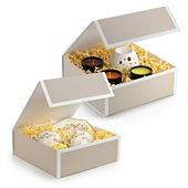 Geschenkboxen Prestige mit Magnetverschluss