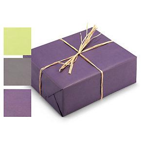 Papier cadeau kraft recycl couleur emballages boutiques raja - Papier cadeau kraft ...