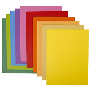 10 chemises ROCK 'S 220 couleurs assorties