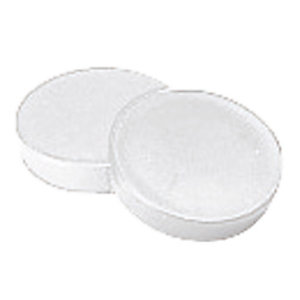 12 witte ronde magneetjes Ø 20 mm