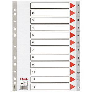 2 jeux d' intercalaires 12 touches imprimées numériques coloris gris Esselte en polypro format A4