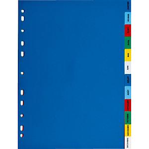 2 x 12 intercalaires mensuels Elba format A4 polypro 12/100e