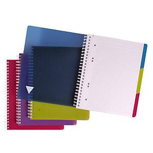 5 schriften met spiraalinbinding 180 pagina's formaat A5 Evolutiv'Book, per set