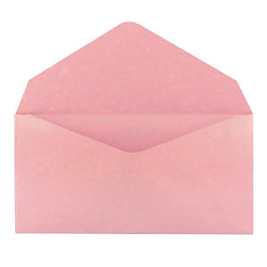 500 enveloppes élections GPV 90 x 140 mm papier recyclé velin 75 g coloris rose