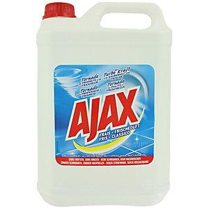 Ajax Bidon de 5 L  Frais