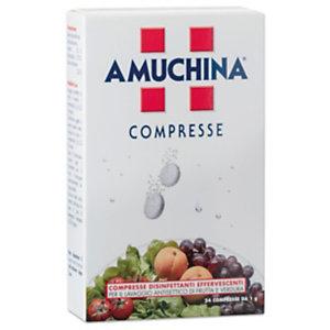 AMUCHINA Compresse Disinfettanti Effervescenti, Presidio Medico Chirurgico, 1 g (confezione 24 pezzi)