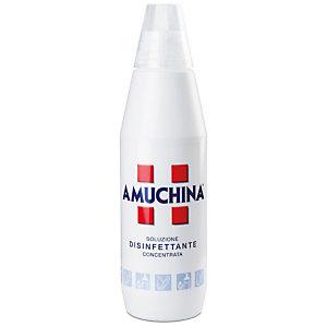 AMUCHINA Soluzione disinfettante, 1 l