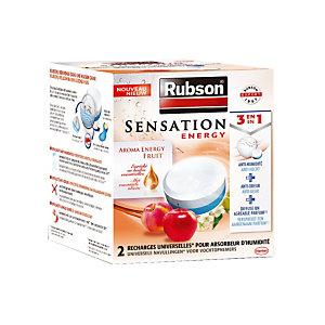 Boîte de 2 Tablettes Sensation Energy Fruit pour absorbeur d'humidité