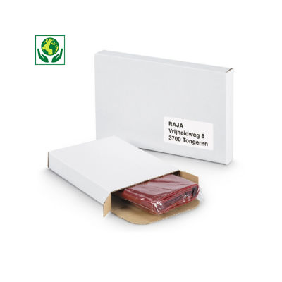 Boîte blanche pour boîtes aux lettres##Witte standaard brievenbusdoos