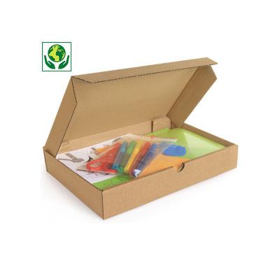 Boîte extra-plate d'expédition carton brune