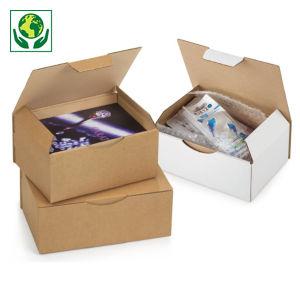 Boîte postale carton brune/blanche RAJAPOST petit modèle