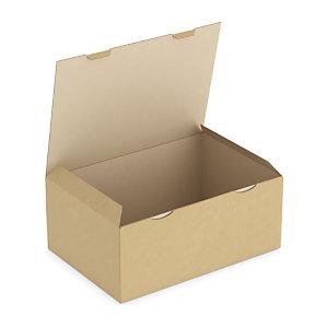 Boîte postale carton brune simple cannelure RAJAPOST format A3