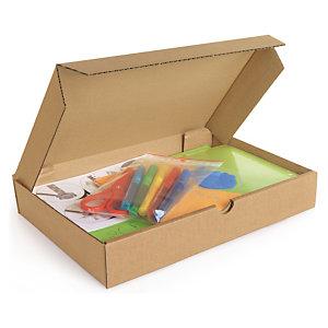 Boîte postale extra-plate carton brune 35x25x2,5 cm