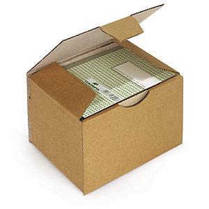 Boîte postale Rajapost brune 20x14x7,5 cm, lot de 50.