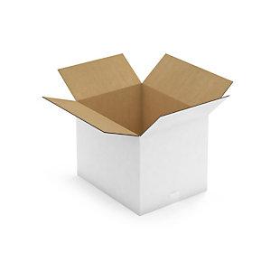 Caisse carton blanche pour plateaux repas RAJA