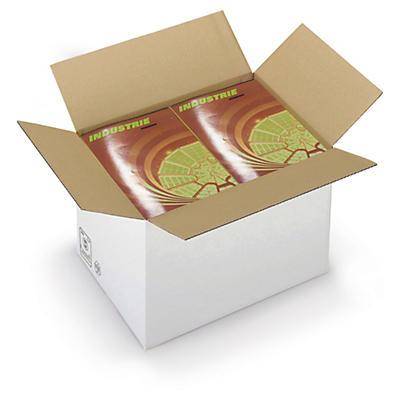 Caisse carton brune/blanche simple cannelure RAJA formats A3/A3+