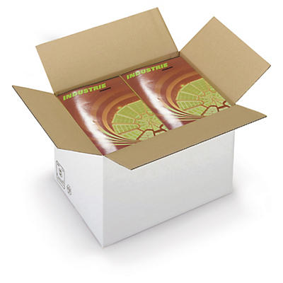 Caisse carton brune/blanche simple cannelure RAJABOX formats A3/A3+