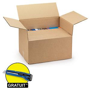 Caisse carton brune double cannelure à hauteur variable