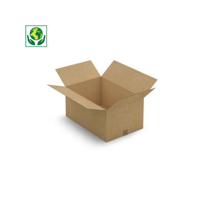 Caisse carton brune simple cannelure RAJABOX longueur 56 à 65 cm