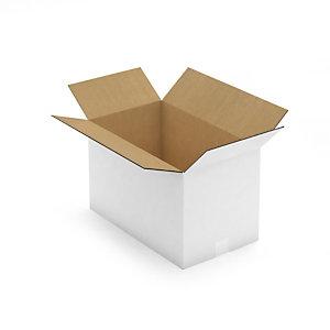 Caisse carton palettisable blanche simple/double cannelure RAJA