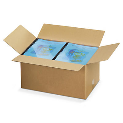 Caisse carton palettisable brune simple cannelure RAJA##Braune Wellpapp-Faltkartons RAJA, 1-wellig, palettierfähig