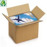 Caisse carton Rajabox brune double cannelure de 40 à 60 cm de long##Kartonnen dozen in dubbelgolfkarton van 40 tot 60 cm