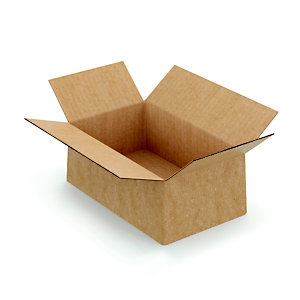 Caisse à montage instantané en carton simple cannelure brun - L.int. 20 x l.15 x h.10 cm
