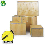 Caja de madera contrachapada