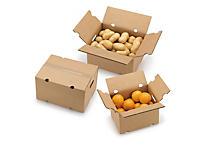 Caja para expedición de frutas y verduras