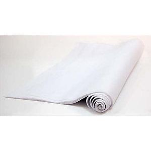 CANSON Rouleau de papier de soie 0,5x5M Blanc