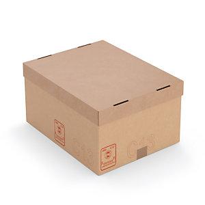 Carton c13