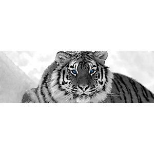 CEANOTHE Quadro decorativo, Tigre Occhi Blu, 97 x 30 cm