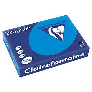 CLAIREFONTAINE Blauwgroen multifunctioneel 160-grams A4-kleurenpapier