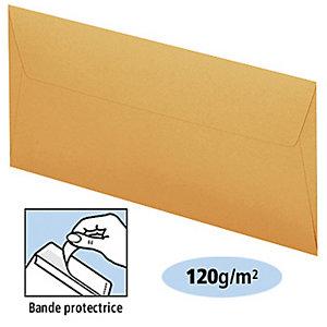 Clairefontaine Enveloppe commerciale Pollen, format internationalDL, 110x220mm, bande auto-adhésive, papier, Clementine
