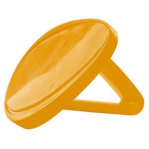 Clip odorant Prodifresh mangue