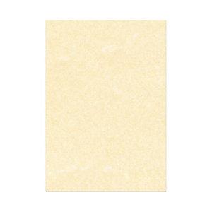DECAdry Carta da lettere A3 per Fotocopiatrici, Stampanti Laser e Inkjet, 165 g/m², Pergamena Champagne (confezione 25 fogli)