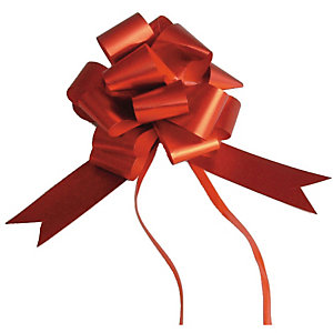 Decorazioni per pacco regalo, Coccarde a strip, Colori assortiti (confezione 10 pezzi)