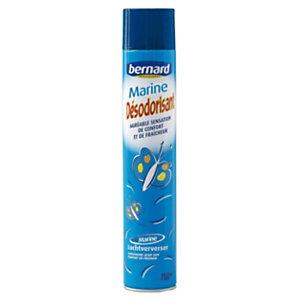 Désodorisant Bernard marine aérosol 750 ml