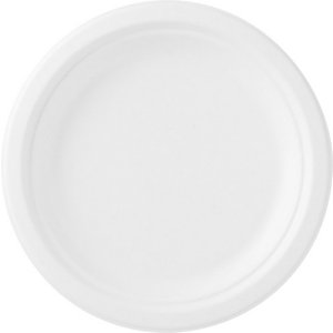 Duni Ecoecho dîner assiette recyclable blanc 50