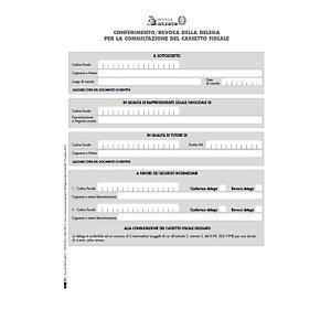 EDIPRO E0019 Modulo per il conferimento/revoca cassetto fiscale delegato, Formato 29,7 x 21 cm