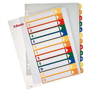Esselte Divisorio prestampato, A4+, 12 tasti, Polipropilene, Colori assortiti