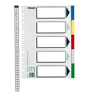 Esselte Separadores, Folio, polipropileno, 5 pestañas, colores surtidos