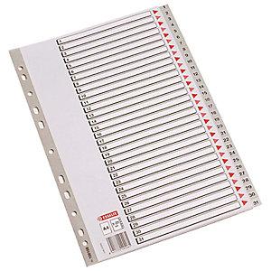 Esselte Separadores numéricos 1-31, Folio, polipropileno, 31 pestañas, gris