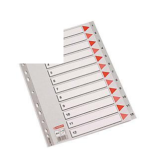 Esselte Separadores numéricos 1-12, Folio, polipropileno, 12 pestañas, gris