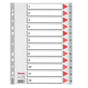 ESSELTE Separatore numerico 1/12 - PPL - A4 - 22,5x29,7 cm - grigio -Esselte