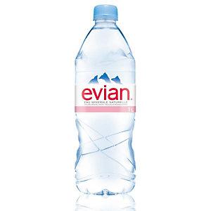 Evian Eau minérale plate, bouteille de 1l (Lot 12 bouteilles)