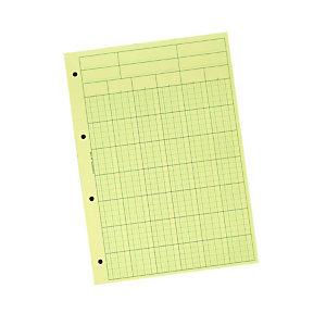Exacompta Bloc Audit de Contrôle comptable, 6 colonnes, 70 feuillets - 21 x 29,7 cm - A4