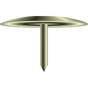 EXACOMPTA Boîte de 100 punaises couleur en laiton - Hauteur de pointe 9mm - 9mm de diamètre
