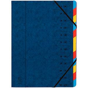 Exacompta Carpeta de clasificación Nature Future, 12 piezas, preimpresa, azul