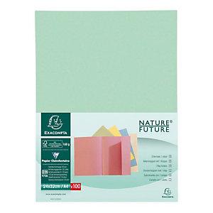 Exacompta Nature Future® Jura 160 Subcarpeta con 1 solapa en cartón prensado para 200 hojas tamaño A4 de 240 x 320 mm en verde suave